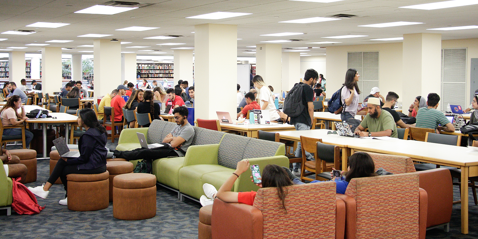 students sitting in the library
