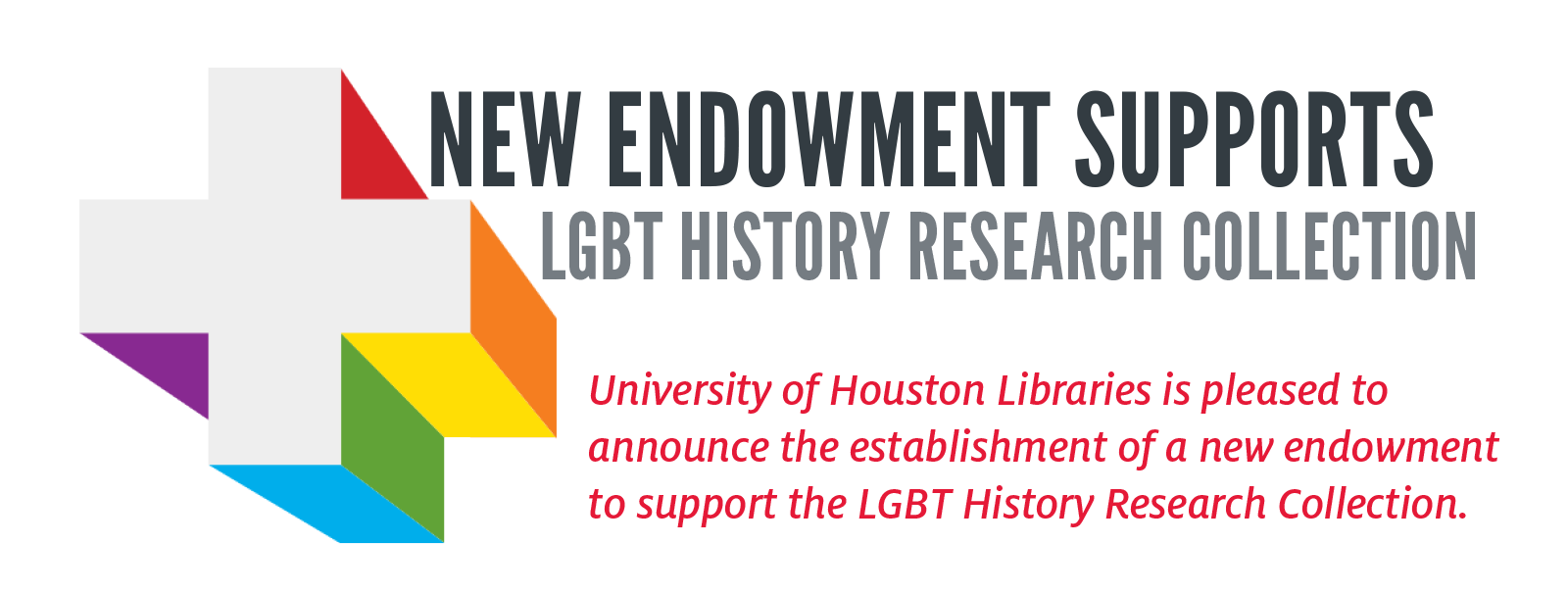 screengrab of the headline for the LGBT HISTORY RESEARCH COLLECTION endowment