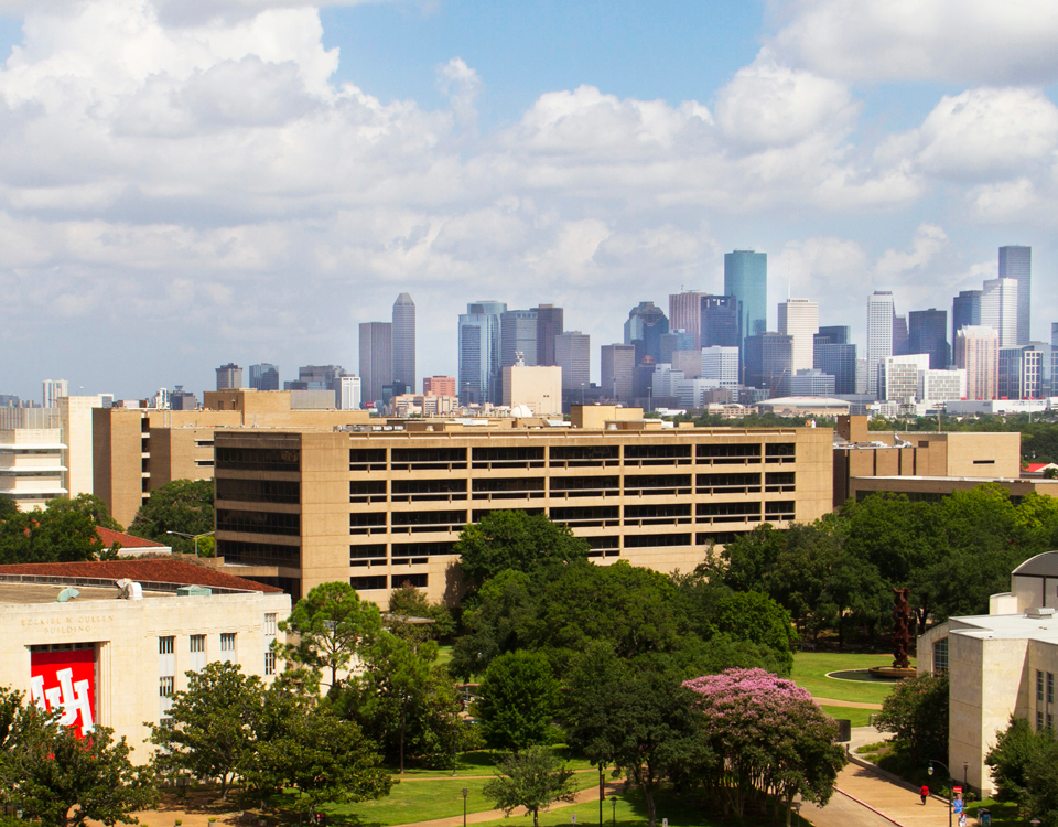 photo of the Houston skyline
