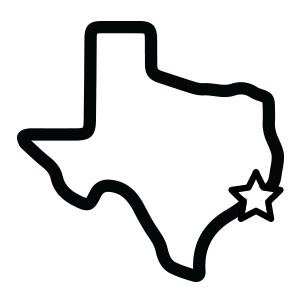 image of state of Texas